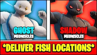 DELIVER FISH TO GHOST & DELIVER FISH TO SHADOW LOCATIONS (Fortnite MEOWSCLES Locations)