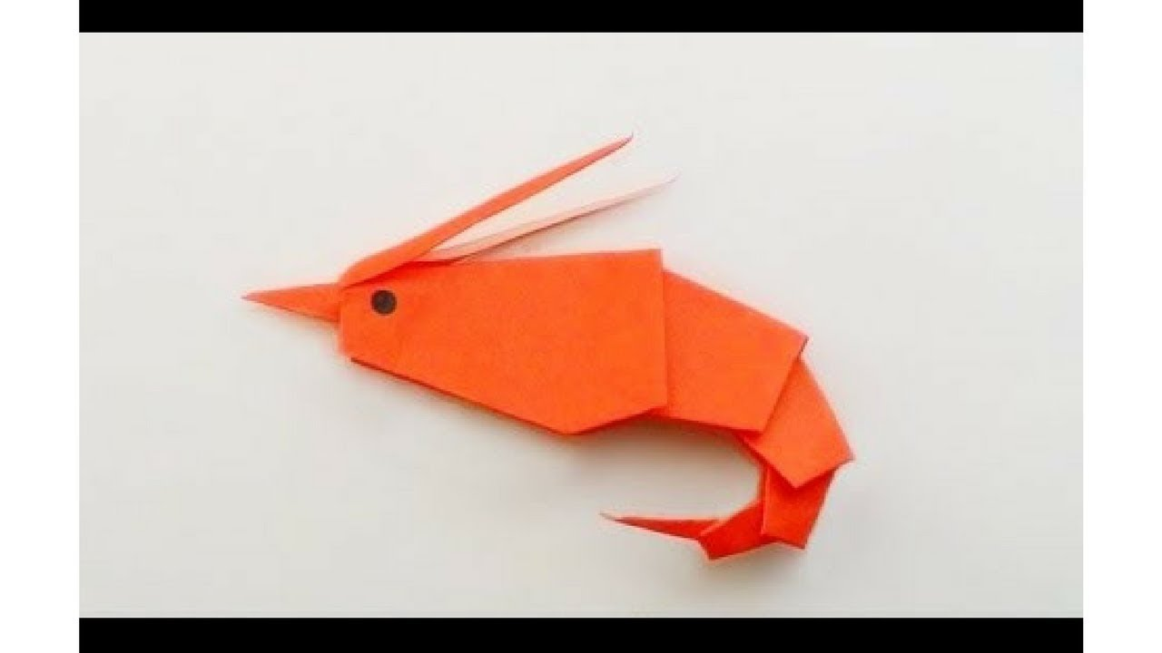Origami Shrimp Easy 4kids Channel