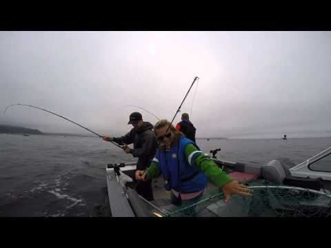 Chinook and coho salmon fishing in tillamook bay and ocean for Tillamook bay fishing