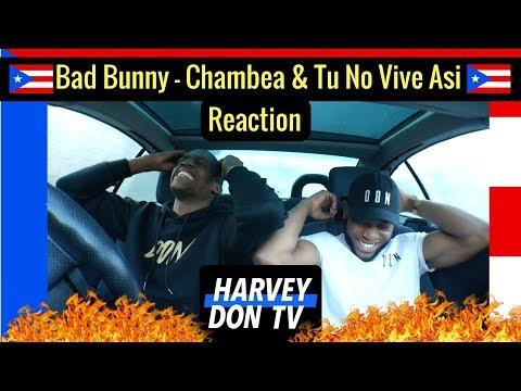 Bad Bunny - Chambea & Tu No Vive Asi Reaction Harvey Don TV @Raymanbeats