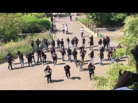 VIMS Flashmob by Phoenix batch@NAKSHATRA 2k17