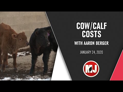 Cow/Calf Costs | Aaron Berger | January 24, 2020