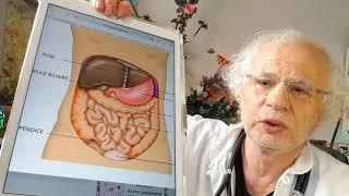 450 ENVIE DE FAIRE PIPI SOUVENT MÊME LA NUIT ou  incontinence Urinaire explication À DIFFUSER URGENT