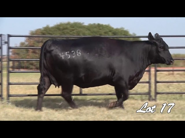 Pollard Farms Lot 17