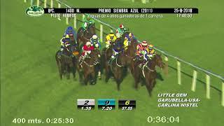 Vidéo de la course PMU PREMIO SIEMBRA AZUL 2011
