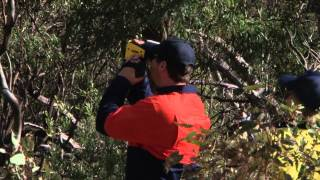 Active Tree Services - Scoper