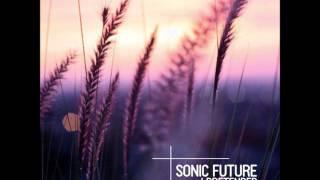Sonic Future - I Pretended