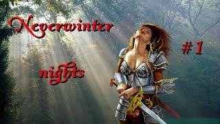 Прохождение Neverwinter nights. Максимальная сложность #1: Начало