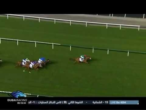 23.02.2012 Meydan (Dubai UAE) 6.Race Al Naboodah Construction Group - Conditions Race 1.800 m