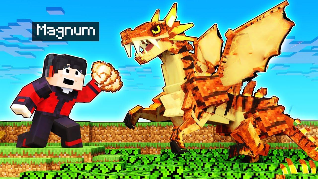 ENCONTRÉ AL DRAGON TIGRE! 🐯😱 | Minecraft