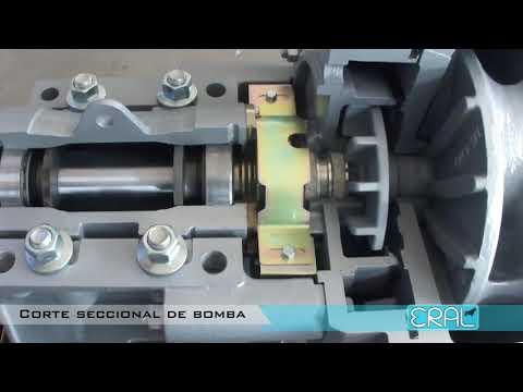 Bomba centrifuga para pulpa funcionamiento