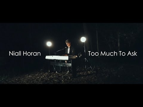 Niall Horan - Too Much To Ask (cover)