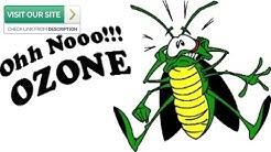 Scorpion Control Gold Canyon AZ 2019 (480-493-5028) Ozone Pest Control
