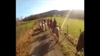 Randonnée à cheval dans le jura Ecurie 4 lacs