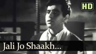 Jali Jo Shaakh (HD) - Tarana Songs - Dilip Kumar - Madhubala - Talat Mahmood