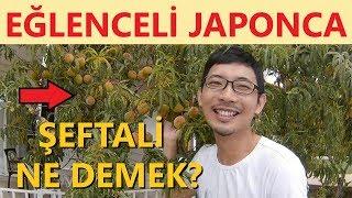 Japonca Kelimeleri Öğrettim! (Meyveler, Tekerleme, Bahçe) YOSHI JAPONCA #1