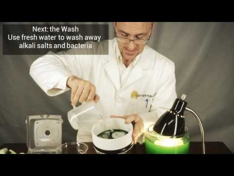 The Dirty Lab Coat: Harvesting Spirulina