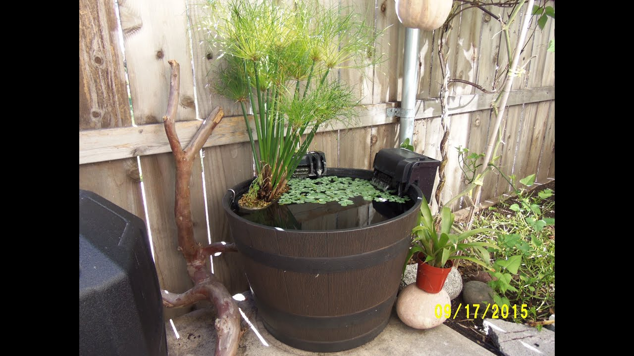 diy goldfish patio pond maxresdefault diy goldfish patio pond: diy patio pond