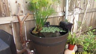 DIY Goldfish Patio Pond
