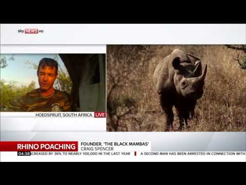Figures Show Rhino Poaching In South Africa Has Fallen