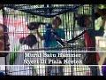 Piala Kretek Murai Batu Hammer Nyeri  Mp3 - Mp4 Download