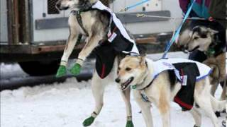 2010 Iditarod Start | The last great race on earth.