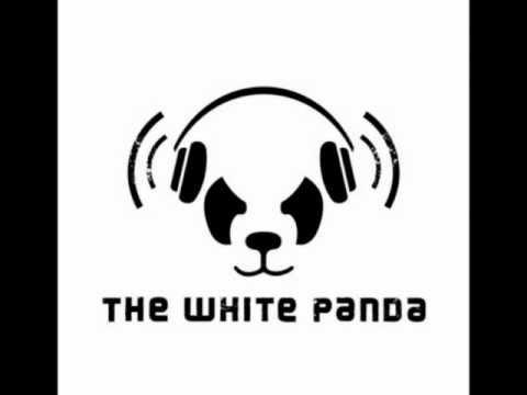 The White Panda - Shake Drop on Video