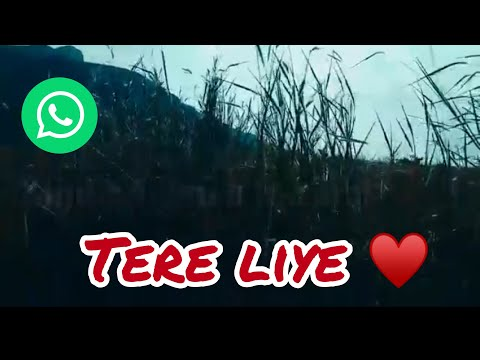 tere-liye-😘-  -❇️-starplus-serial-  -💟-whatsapp-status-song-  ❣️love-song-  -vas-creation