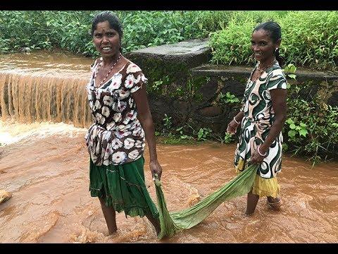 Dang tribal women fishing near Ahwa village - Gujarat