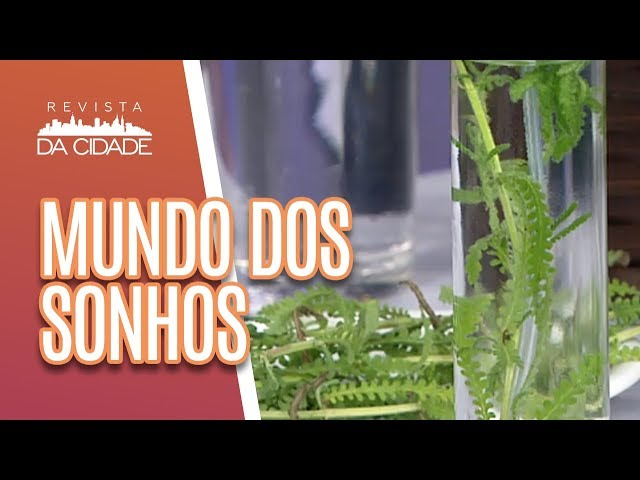 Spray para Estimular Bons Sonhos + Mundo dos Sonhos- Revista da Cidade (01/03/19)