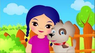 Kundel bury - teledysk animowany dla dzieci po polsku