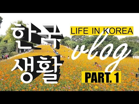 Indonesia lives in korea DAILY VLOG #1