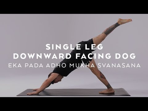 How to do Single Leg Downward Facing Dog | Eka Pada Adho Mukha Svanasana Tutorial with Dylan Werner