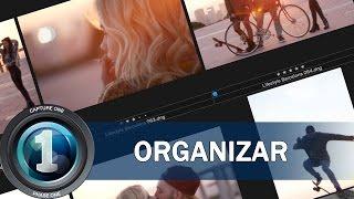 Organizar fotografías: Etiquetas, metadatos y colecciones - (3) Tutorial Capture One en Español