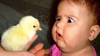 Cute Babies meeting with Farm animals -  Funny Babies and Animal videos 2020