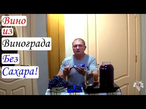 Как сделать вино из винограда изабелла без сахара в домашних условиях