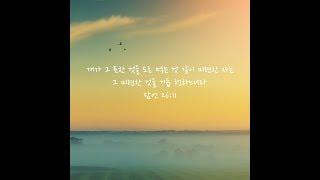 [조각설교] 잠언26:11 (feat. 개와 양)