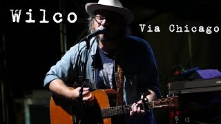 Wilco: Via Chicago [4K] 2015-08-01 - Gathering of the Vibes