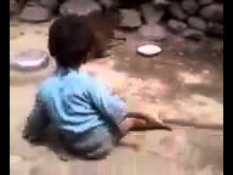 Video Kocak - Anak Kecil Berantem Dengan Monyet