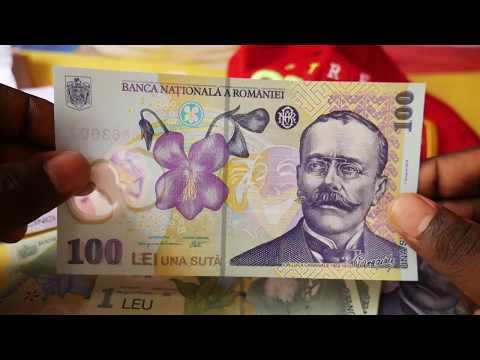 Romanian Banknotes - Romanian 100 Lei
