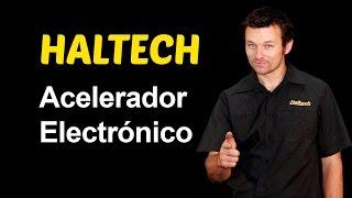Acelerador Electrónico y la Haltech Elite