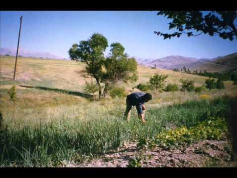 Garip Dost Orimazin (kürecik) Türküsü Malatya-Akçadağ-Kürecik Asireti