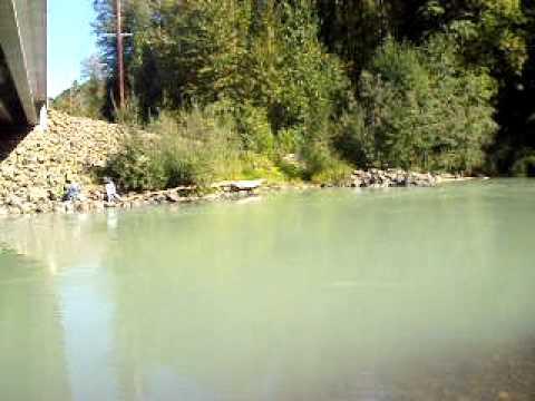 Fishing nisqually river lacey wa salmon 2009 youtube for Nisqually river fishing report