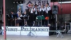 Wiinit Pelimannit konsert i Pargas, Finland 8.8.2009 på Tammiluoto vingård