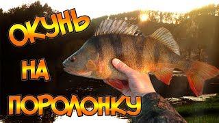 Уловистая приманка - поролоновая рыбка. Ловля окуня на поролонку.