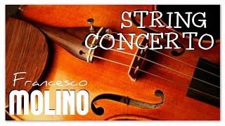 Francesco Molino Violin Concerto - Instrumental Classical Music