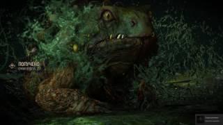 Как убить жабу в Ведьмак 3 - Каменные Сердца