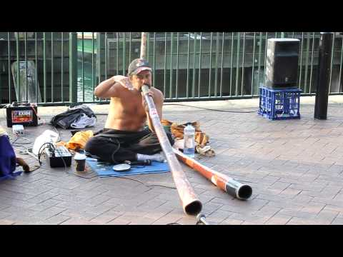 awesome didgeridoo playing australia