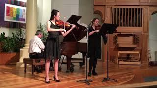 Sonata in G minor Op. 2 No. 8 for Violin and Viola - i,ii  (Händel)