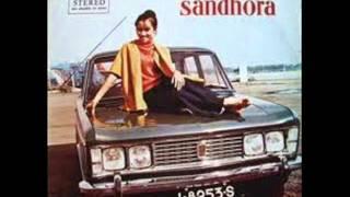 Gambar cover TITIEK SANDHORA -  DATANG DAN PERGINYA CINTA [BOWO Collect. ]